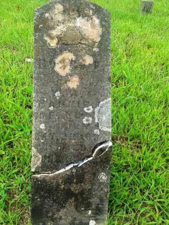 ?, ROSCOE - Fleming County, Kentucky | ROSCOE ? - Kentucky Gravestone Photos