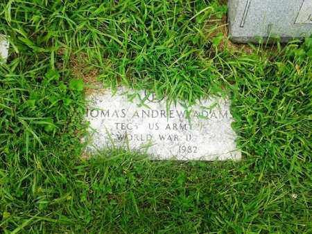 ADAMS (VETERAN WWII), THOMAS ANDREW - Fleming County, Kentucky | THOMAS ANDREW ADAMS (VETERAN WWII) - Kentucky Gravestone Photos