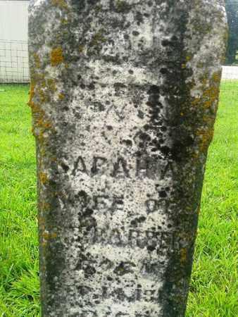 BARBER, SARAH A - Fleming County, Kentucky | SARAH A BARBER - Kentucky Gravestone Photos