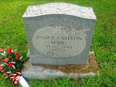 BURKE, JANICE CARLYON - Fleming County, Kentucky | JANICE CARLYON BURKE - Kentucky Gravestone Photos