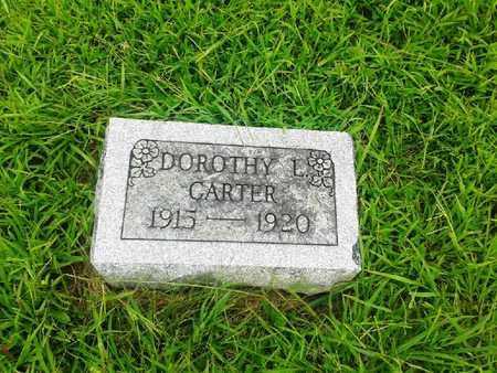 CARTER, DOROTHY L - Fleming County, Kentucky | DOROTHY L CARTER - Kentucky Gravestone Photos