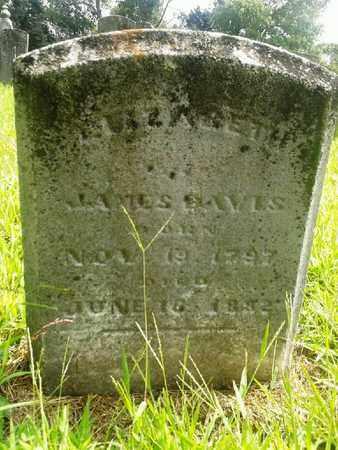 DAVIS, ELIZABETH - Fleming County, Kentucky | ELIZABETH DAVIS - Kentucky Gravestone Photos