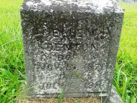 DENTON, ELLEN - Fleming County, Kentucky   ELLEN DENTON - Kentucky Gravestone Photos