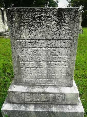 BARBER ELLIS, INEZ - Fleming County, Kentucky | INEZ BARBER ELLIS - Kentucky Gravestone Photos