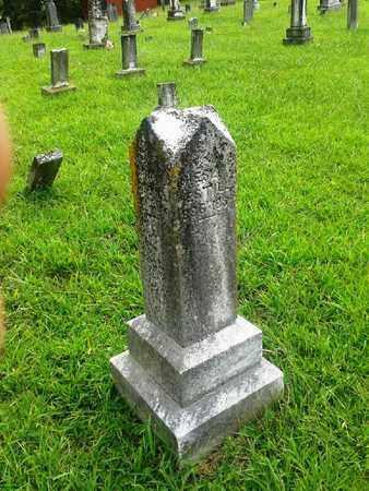 ESTILL, SARAH - Fleming County, Kentucky   SARAH ESTILL - Kentucky Gravestone Photos