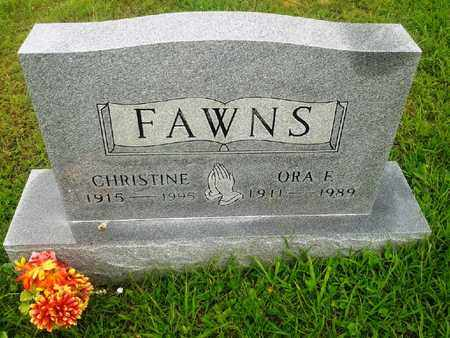 FAWNS, CHRISTINE - Fleming County, Kentucky   CHRISTINE FAWNS - Kentucky Gravestone Photos