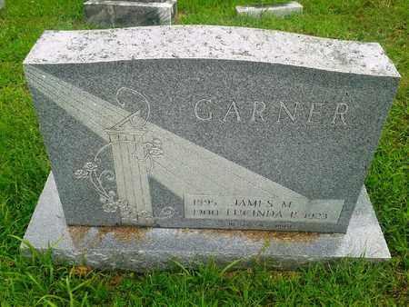 GARNER, LUCINDA P - Fleming County, Kentucky | LUCINDA P GARNER - Kentucky Gravestone Photos