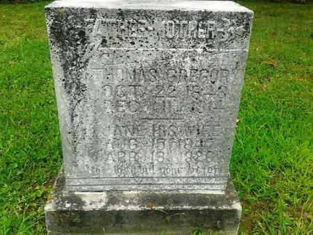 GREGORY, JANE - Fleming County, Kentucky | JANE GREGORY - Kentucky Gravestone Photos