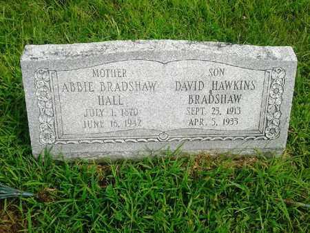 BRADSHAW HALL, ABBIE - Fleming County, Kentucky | ABBIE BRADSHAW HALL - Kentucky Gravestone Photos