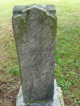 HAWKINS, LOUISA M - Fleming County, Kentucky | LOUISA M HAWKINS - Kentucky Gravestone Photos
