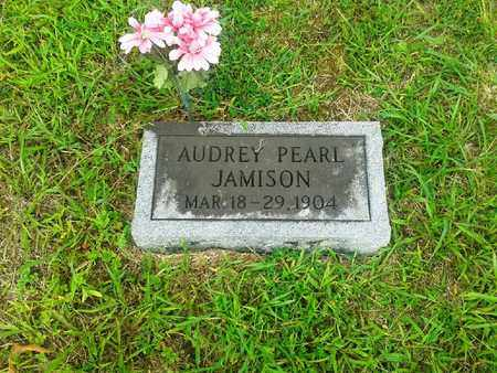JAMISON, AUDREY PEARL - Fleming County, Kentucky | AUDREY PEARL JAMISON - Kentucky Gravestone Photos
