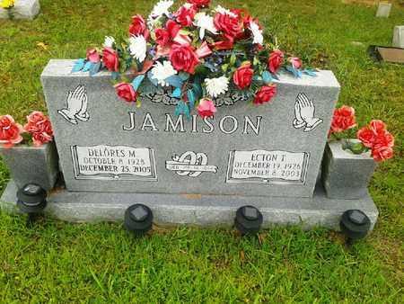 JAMISON, ECTON T - Fleming County, Kentucky | ECTON T JAMISON - Kentucky Gravestone Photos