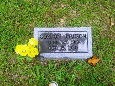 JAMISON, GORDON - Fleming County, Kentucky | GORDON JAMISON - Kentucky Gravestone Photos