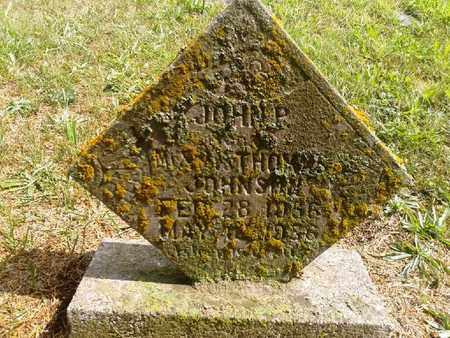 JOHNSON, JOHN P - Fleming County, Kentucky | JOHN P JOHNSON - Kentucky Gravestone Photos