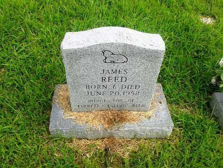 REED, JAMES - Fleming County, Kentucky   JAMES REED - Kentucky Gravestone Photos