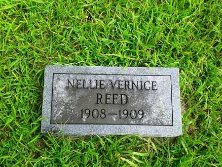 REED, NELLIE VERNICE - Fleming County, Kentucky | NELLIE VERNICE REED - Kentucky Gravestone Photos
