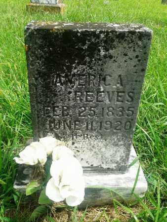 REEVES, AMERICA - Fleming County, Kentucky   AMERICA REEVES - Kentucky Gravestone Photos