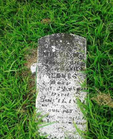 REEVES, MIR? - Fleming County, Kentucky | MIR? REEVES - Kentucky Gravestone Photos