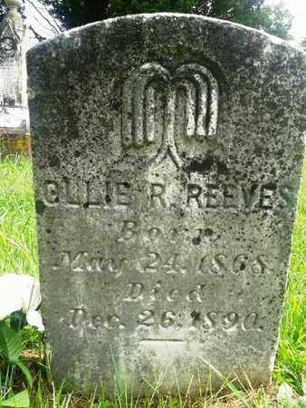 REEVES, OLLIE R - Fleming County, Kentucky | OLLIE R REEVES - Kentucky Gravestone Photos