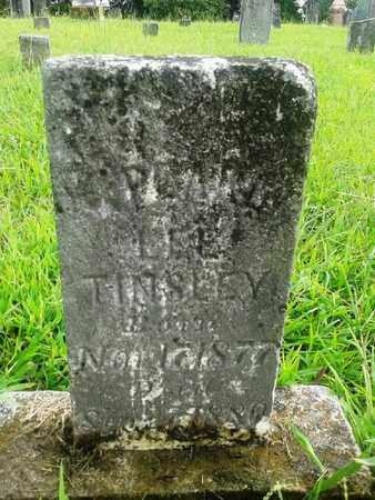 TINSLEY, ? LEE - Fleming County, Kentucky | ? LEE TINSLEY - Kentucky Gravestone Photos