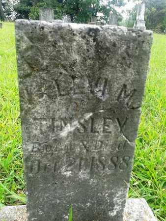 TINSLEY, LEVI M - Fleming County, Kentucky   LEVI M TINSLEY - Kentucky Gravestone Photos