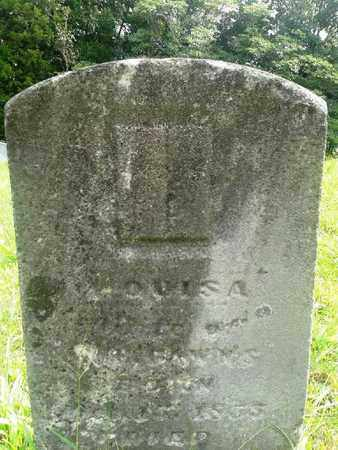 UNKNOWN, LOUISA - Fleming County, Kentucky   LOUISA UNKNOWN - Kentucky Gravestone Photos