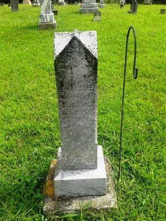 VICE, EVALINE - Fleming County, Kentucky | EVALINE VICE - Kentucky Gravestone Photos