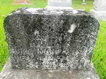 WILLIAMS, NANCY JANE - Fleming County, Kentucky | NANCY JANE WILLIAMS - Kentucky Gravestone Photos