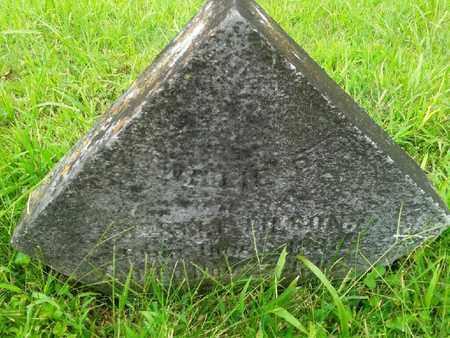 WILSON, NELLIE - Fleming County, Kentucky | NELLIE WILSON - Kentucky Gravestone Photos