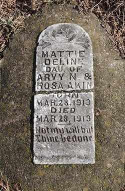 AKIN, MATTIE DELINE - Green County, Kentucky | MATTIE DELINE AKIN - Kentucky Gravestone Photos