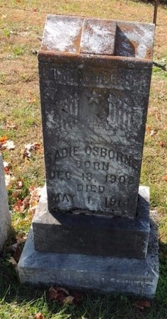 OSBORNE, SADIE - Green County, Kentucky | SADIE OSBORNE - Kentucky Gravestone Photos