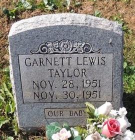 TAYLOR, GARNETT LEWIS - Green County, Kentucky | GARNETT LEWIS TAYLOR - Kentucky Gravestone Photos