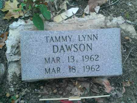 DAWSON, TAMMY - Hancock County, Kentucky   TAMMY DAWSON - Kentucky Gravestone Photos