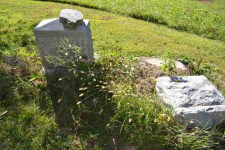 JARBOE, GEORGE - Hancock County, Kentucky   GEORGE JARBOE - Kentucky Gravestone Photos