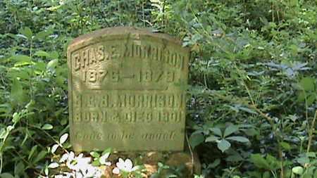 MORRISON, B E B - Hancock County, Kentucky | B E B MORRISON - Kentucky Gravestone Photos