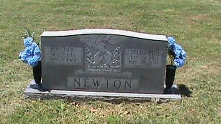 NEWTON, ROY JACK - Hancock County, Kentucky | ROY JACK NEWTON - Kentucky Gravestone Photos