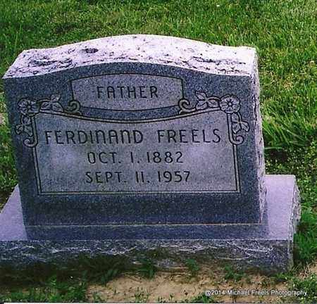 FREELS, FERDINAND - Henderson County, Kentucky | FERDINAND FREELS - Kentucky Gravestone Photos