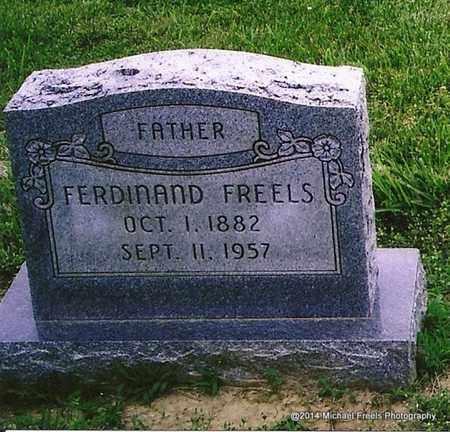 FREELS, FERDINAND - Henderson County, Kentucky   FERDINAND FREELS - Kentucky Gravestone Photos