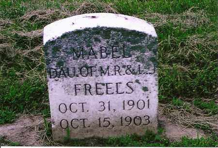 FREELS, MABEL - Henderson County, Kentucky | MABEL FREELS - Kentucky Gravestone Photos