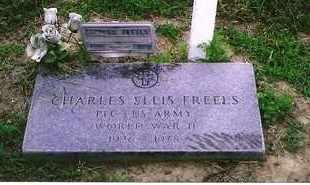 FREELS (VETERAN WWII), CHARLES ELLIS - Henderson County, Kentucky | CHARLES ELLIS FREELS (VETERAN WWII) - Kentucky Gravestone Photos
