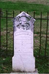 FRIELDS, SUSANNAH T. - Henderson County, Kentucky | SUSANNAH T. FRIELDS - Kentucky Gravestone Photos