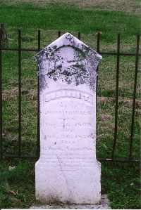 HURST FRIELDS, SUSANNAH T. - Henderson County, Kentucky | SUSANNAH T. HURST FRIELDS - Kentucky Gravestone Photos