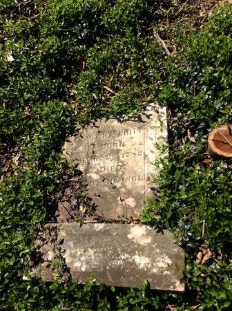 HATCHITT, WM - Henderson County, Kentucky | WM HATCHITT - Kentucky Gravestone Photos