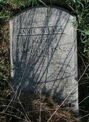 ADAMS, ANNIE - Jefferson County, Kentucky | ANNIE ADAMS - Kentucky Gravestone Photos