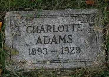 ADAMS, CHARLOTTE - Jefferson County, Kentucky | CHARLOTTE ADAMS - Kentucky Gravestone Photos