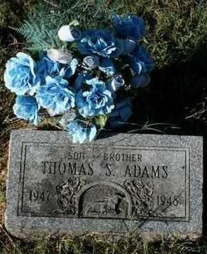 ADAMS, THOMAS S. - Jefferson County, Kentucky | THOMAS S. ADAMS - Kentucky Gravestone Photos