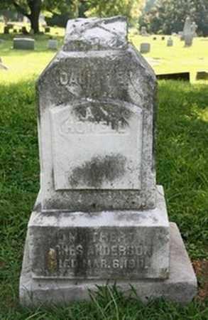 ANDERSON, AGNES - Jefferson County, Kentucky | AGNES ANDERSON - Kentucky Gravestone Photos