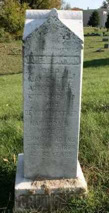 ADAMS, NARCISSA - Jefferson County, Kentucky | NARCISSA ADAMS - Kentucky Gravestone Photos