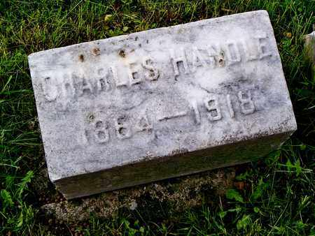 HANDLE, CHARLES - Kenton County, Kentucky | CHARLES HANDLE - Kentucky Gravestone Photos