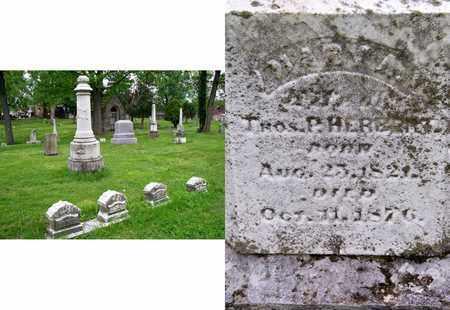 HERBERT, MARY A - Kenton County, Kentucky | MARY A HERBERT - Kentucky Gravestone Photos